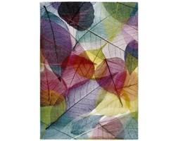 Dywan Universal Colors Multi, 120x170 cm