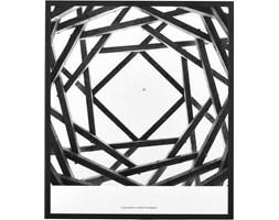 Obraz Prospections Rods 32x37 cm biało-czarny