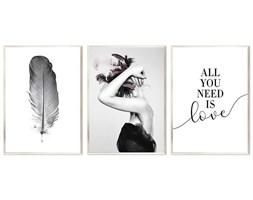 PIÓRO,  KOBIETA Z PIÓRAMI WE WŁOSACH & ALL YOU NEED IS LOVE komplet trzech obrazów w srebrnej ramie, 53x73 cm