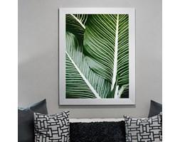 Atrakcyjny plakat natura 67500 - Buy Design