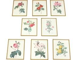 Komplet ośmiu oprawionych ilustracji botanicznych, lata 70.