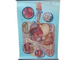 Plakat medyczny, lata 70.