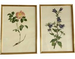Para grafik botanicznych, lata 60.