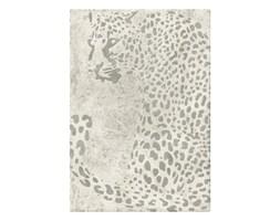 Dywany Rozmiar 120x170 Cm W Zwierzęce Wzory Wyposażenie