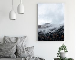 Obraz na płótnie - Ośnieżone drzewa na wzgórzu we mgle - 70 x 100 cm