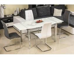 Stół Gd020 Biały/Chrom 120(180)X80