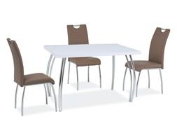 Stół Sk-2 Biały Połysk /CHROM 140x75