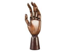 Authentic Models :: Dłoń artystyczna