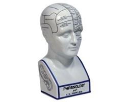 Authentic Models :: Głowa frenologii