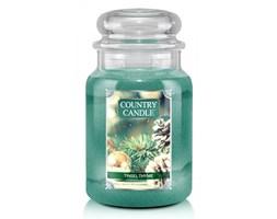 Country Candle - Tinsel Thyme - Duży słoik (680g) 2 knoty