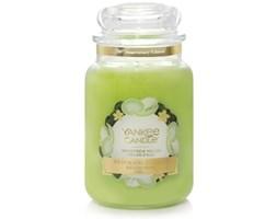 Świeca zapachowa Yankee Candle Honeydew Melon