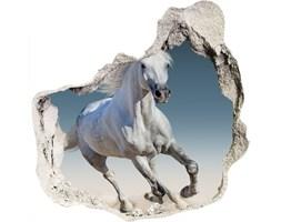 Dziura 3d foto tapeta Biały koń w galopie