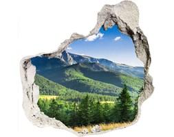 naklejka fototapeta  na ścianę Skocznia w Tatrach