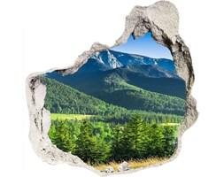 naklejka fototapeta 3D Skocznia w Tatrach
