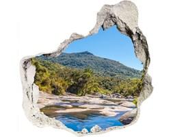 naklejka fototapeta 3D na ścianę Rzeka w lesie