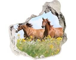 Dziura 3d fototapeta Dwa konie w galopie