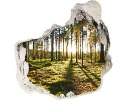 naklejka fototapeta 3D widok Las sosnowy
