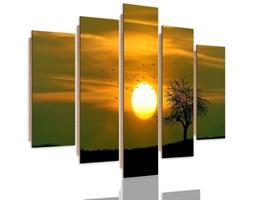 Obraz pięcioczęściowy na panelu dekoracyjnym, pentaptyk typ C, Drzewo ptaki i zachód słońca