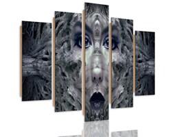 Obraz pięcioczęściowy na panelu dekoracyjnym, pentaptyk typ C, Twarz kobiety fantasy