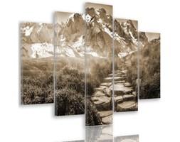 Obraz pięcioczęściowy na płótnie Canvas, pentaptyk typ A, Kamienna droga na szczyt 1