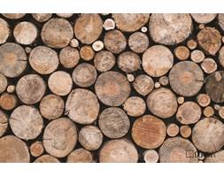 Wycieraczka Live&Laugh WOOD Pnie drzewa 40x60 cm